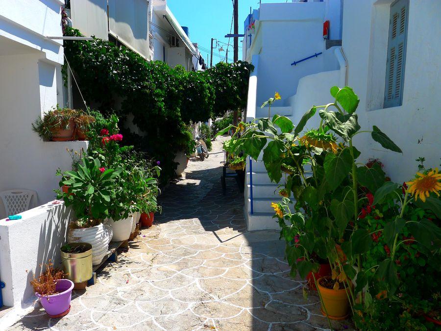 Δρομάκια του Χωριού – Λουλουδιασμένες αυλές